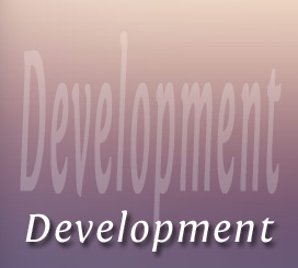 Website Development Phase 3